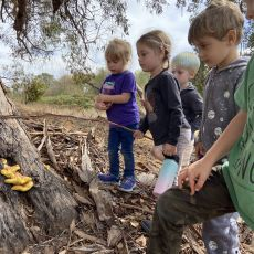 No Child Left Inside: Connecting Children, Nature and Learning
