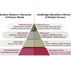 Your Child's Hierarchy of Needs for School Success