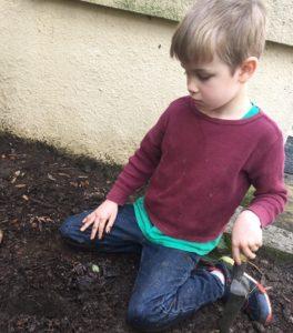 Oz digging in dirt
